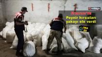 Erzurum'da süt ürünleri hırsızlığı...